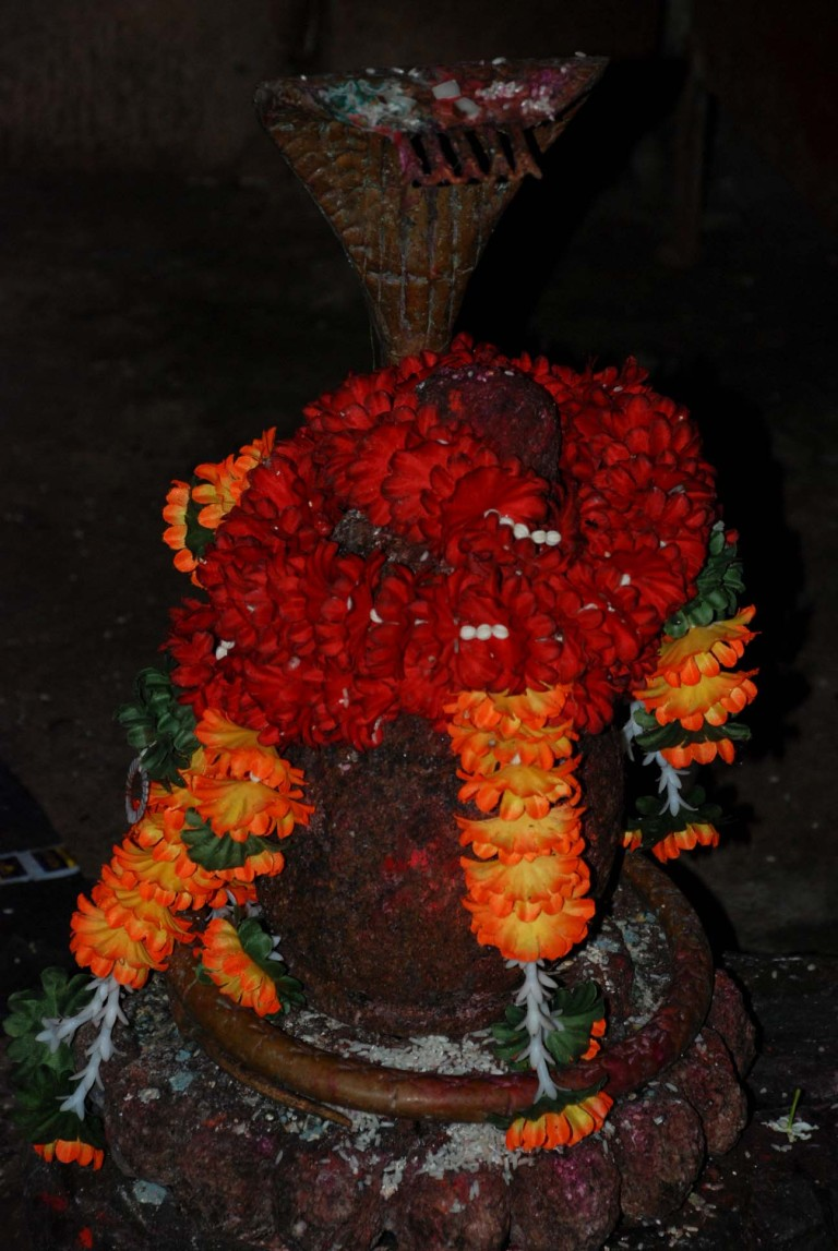 The linga enshrined in the garbhagriha