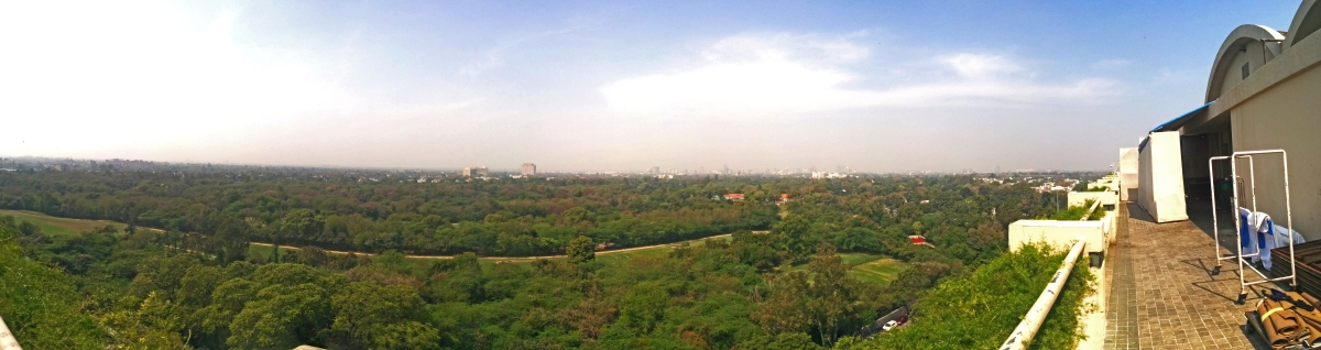 Delhi Golf course, with Lodhi Gardens in the background
