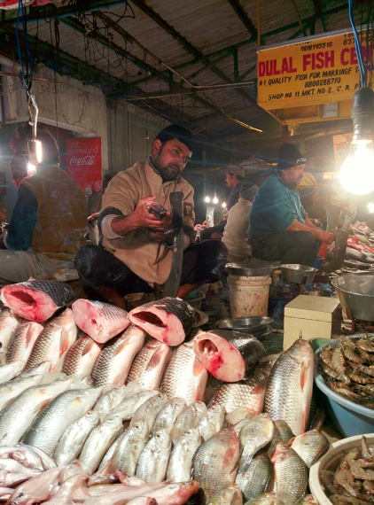 Yes, I am bengali hence this fishy pictures: CR Park Market, New Delhi