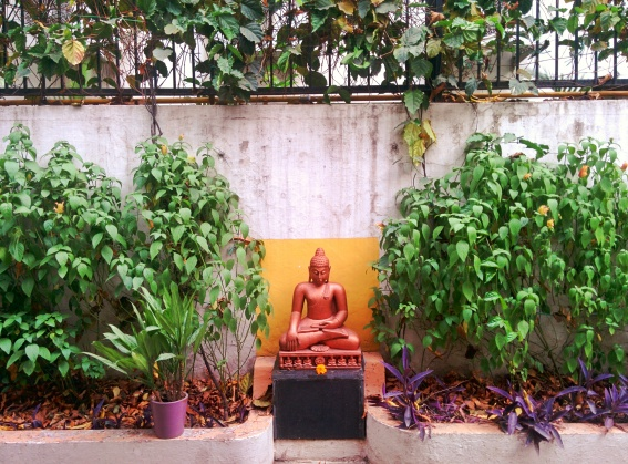 The Buddha of Yoga